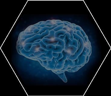 Simple Hormones alzheimers prevention