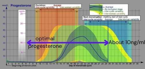 Optimal Progesterone Graph